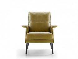 vooraanzicht vaste fauteuil in leer dutchz 204 design